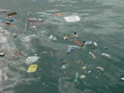 mare_inquinamento9