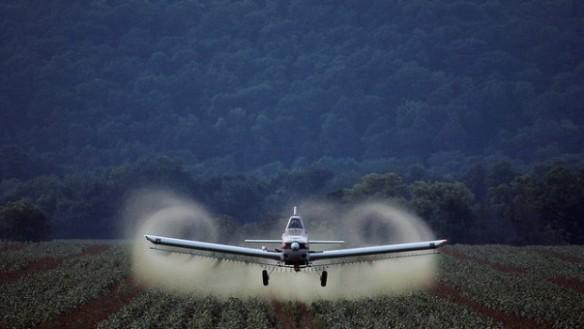 pesticidi-620x350
