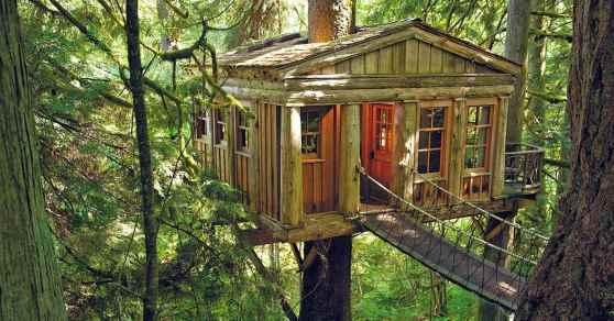Case-sugli-alberi